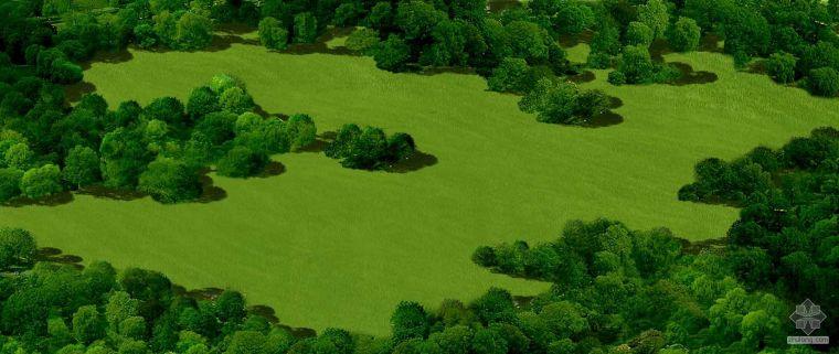 草地贴图_2