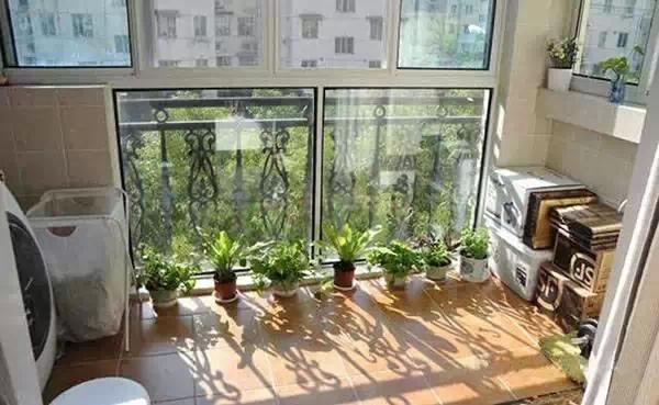 小天地大作为 改造后的小阳台 满满的幸福感!