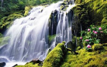 假山瀑布仙境