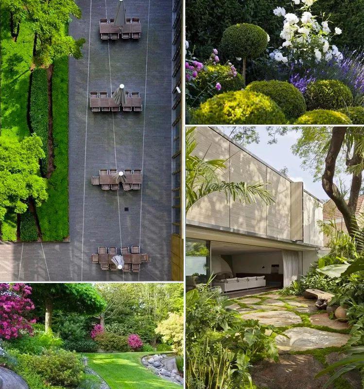 植物造景·实用景观设计来一波_2