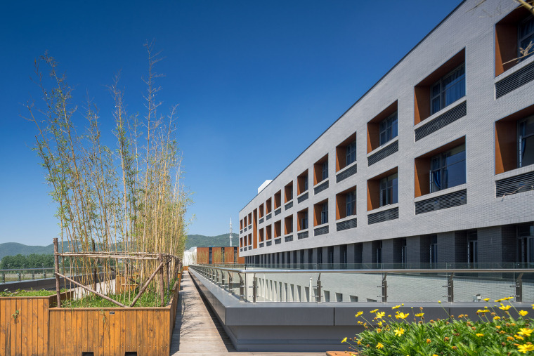 020-on-the-water-side-medical-college-building-of-jiangnan-university-china-by-tjad