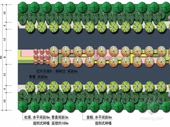 [浙江]多彩新区道路景观绿化设计方案