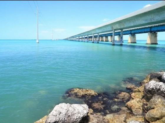 桥梁深水高桩基础施工关键技术经验总结382页