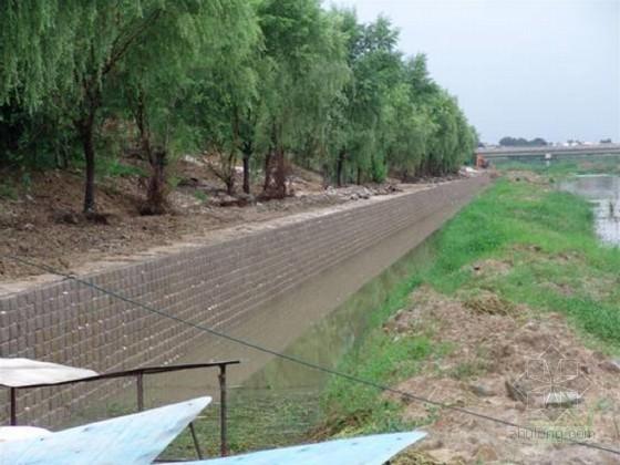 [福建]湿地公园工程钢筋混凝土挡土墙专项施工方案