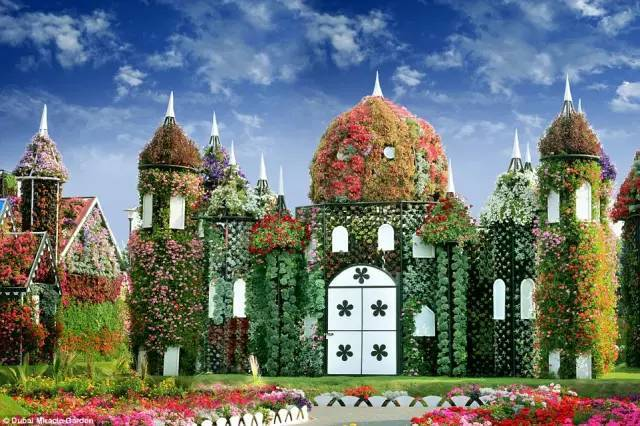 迪拜的花卉展览,全世界规模最大!你肯定没看过!_6