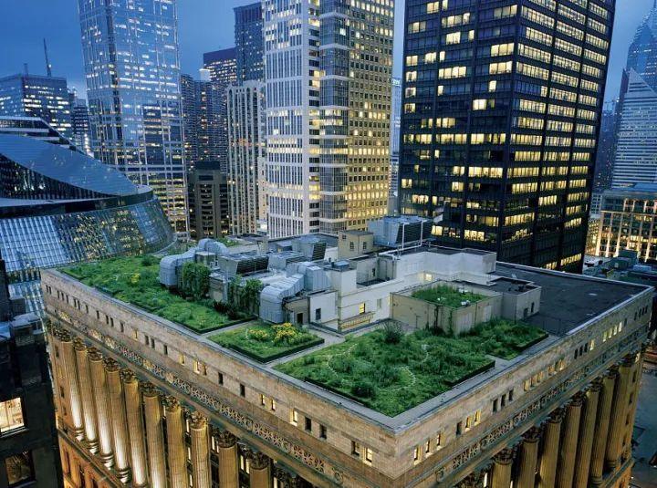 设计视角丨建筑屋顶绿化成热门_3