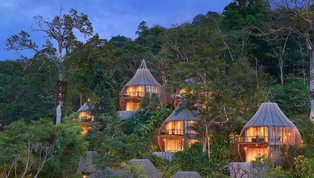 这些树屋,满足你对森林的所有幻想_31