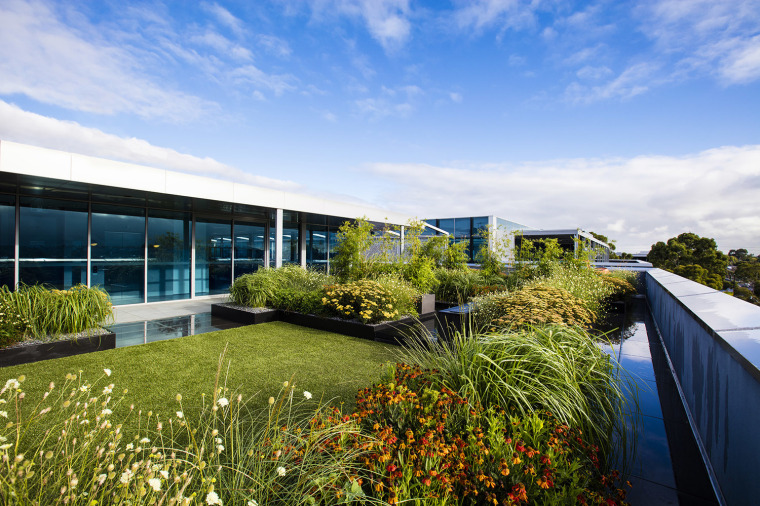 澳大利亚Pentana屋顶花园