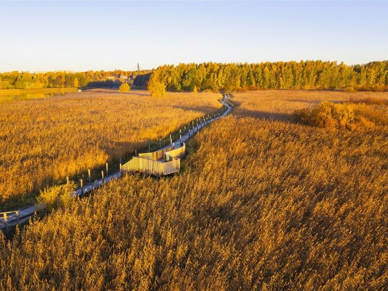 芬兰Nattours无障碍休闲步道景观