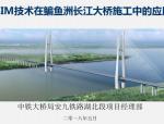 BIM技术在鳊鱼洲长江大桥施工的应用