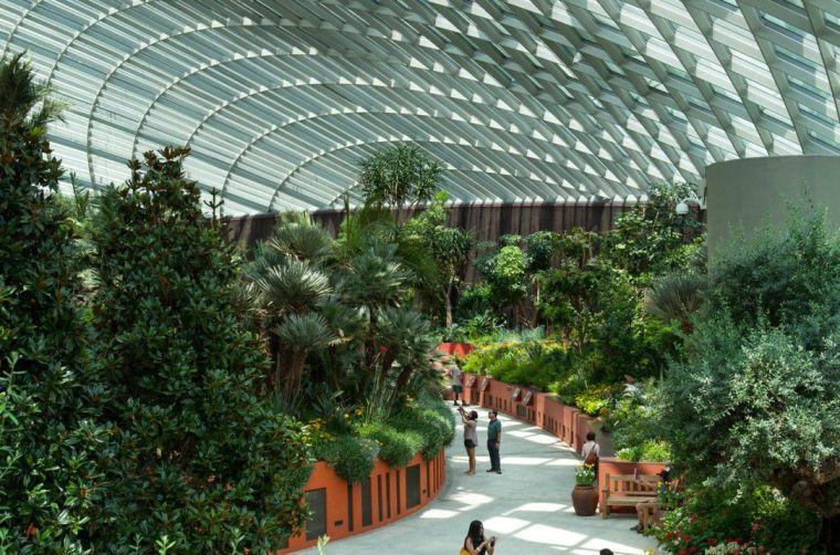新加坡世界级超级温室花园-7