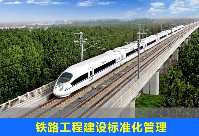 铁路工程建设标准化管理(156页)