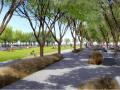 [江苏]滨水筑巢岛屿湿地公园景观设计方案(生态修复的典范)