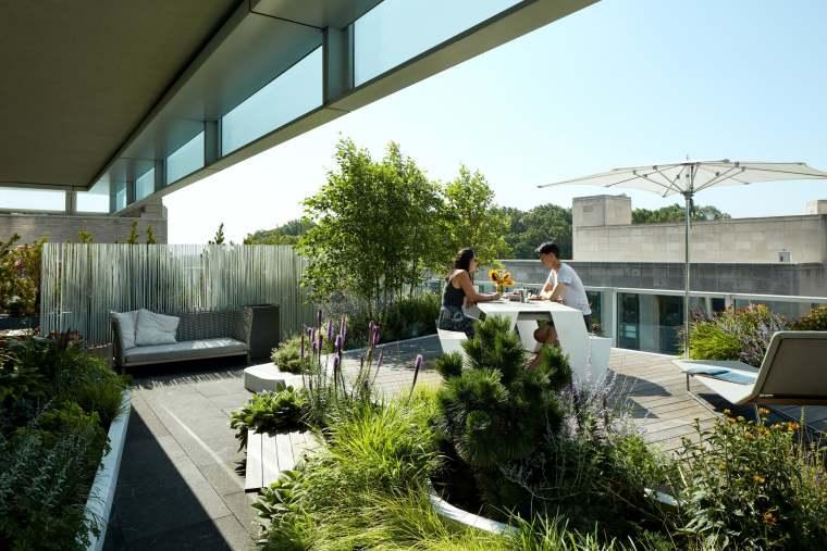 郁郁葱葱的屋顶花园