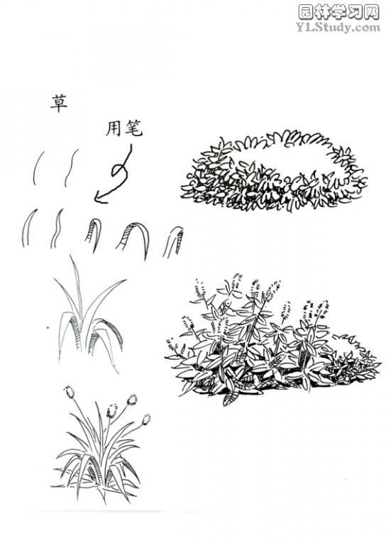 手绘素材分享给大家,可以学习~-景观设计-筑龙园林