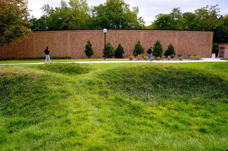 美国绿色波形草坪-7