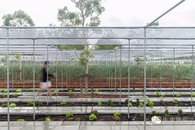 农业景观的意义_85