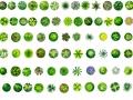 园林手绘平面形意素材(图片加psd全版)