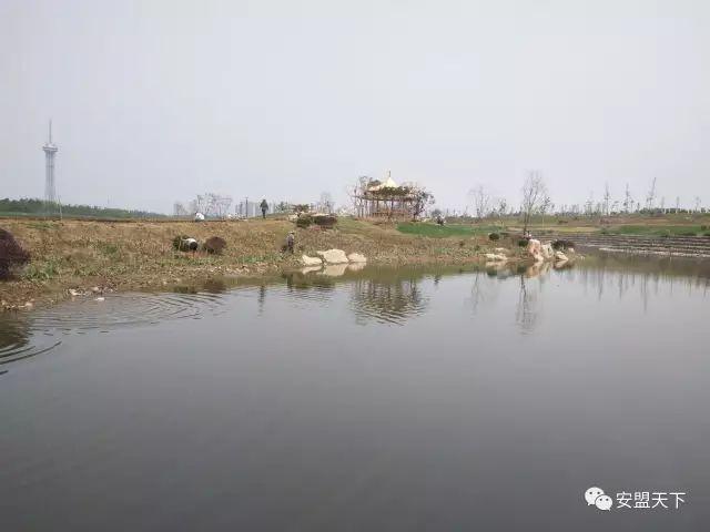河道整治与河道生态边坡防护工程