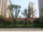 室外木地面施工质量要求