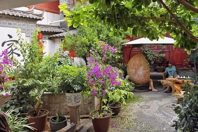 愿有一个院子,在四季里等你_5