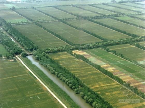 农村土地综合整治规划(知名教授)