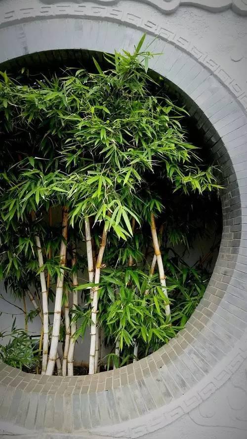新中式景观设计讲解_64