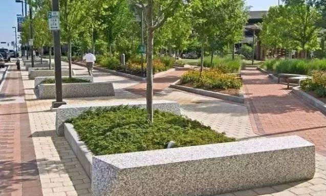 树阵景观的植物配置要点!_18