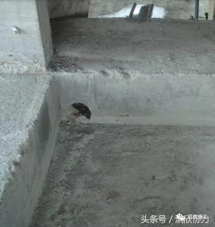 万科集团住宅卫生间降板式同层排水技术标准_11