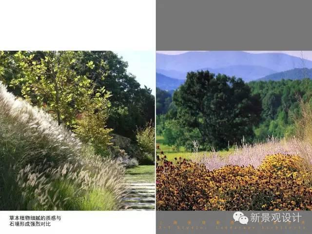 """知名设计院景观设计详细大剖析,转身变""""大牛""""!!_71"""