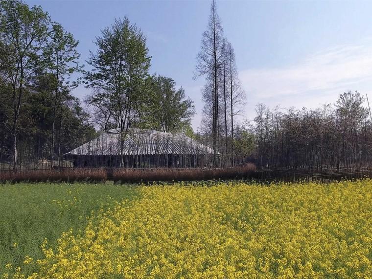 四川竹里景观