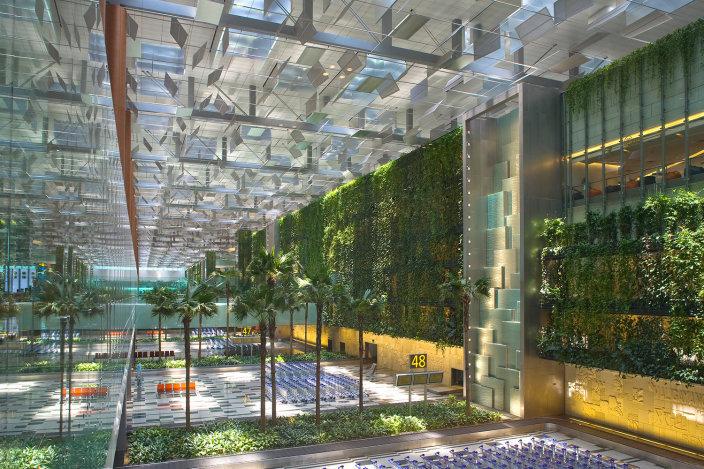 樟宜机场T3室内垂直绿化景观