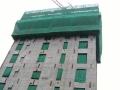 高层建筑液压自爬模模板施工讲解