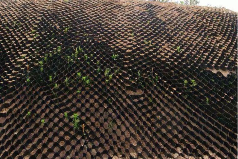 从工艺流程到施工要求,详解2种生态护坡