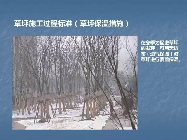 龙湖景观施工工艺标准效果(让你更懂现场)--软景篇_27