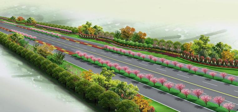 道路绿化效果