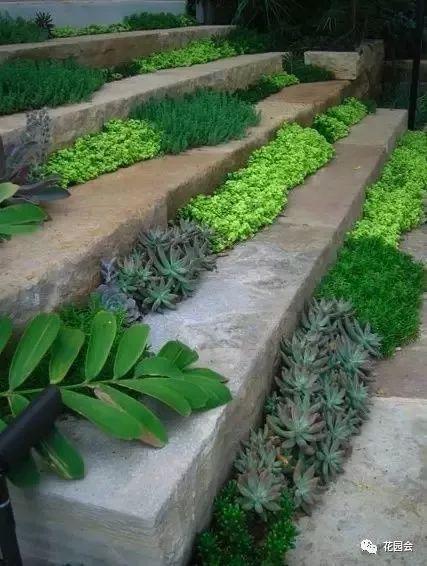 花草与石板的关系•花园小径_28