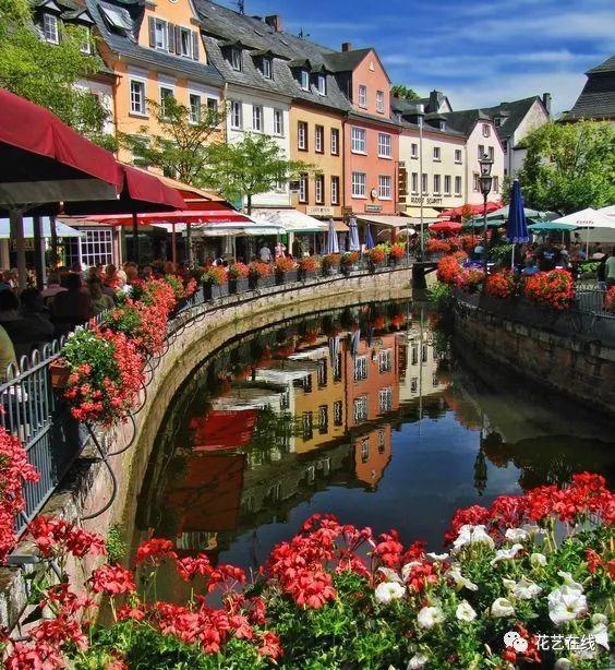 10家私藏德国最美花店,哪一家最打动你?