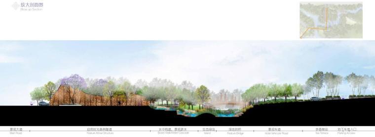 高端酒店景观设计——神秘森林放大剖面图