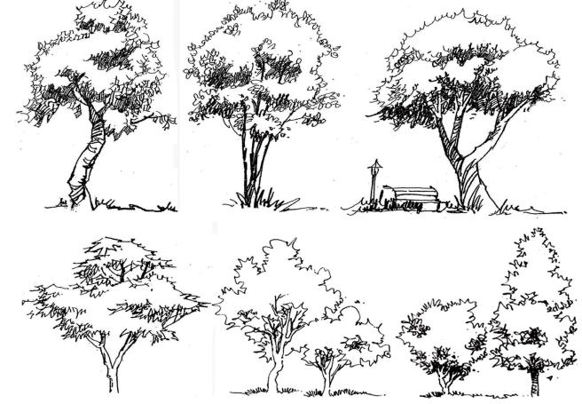 风景园林手绘线稿,可下载打印_2