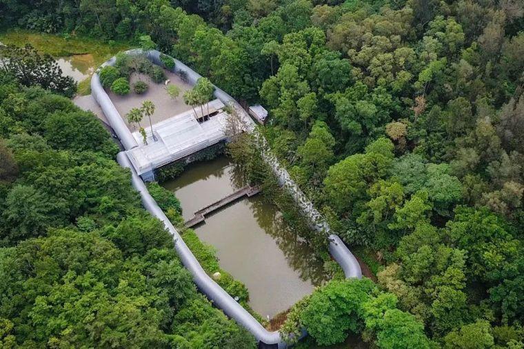 一个富二代,继承了150亩森林,与世隔绝
