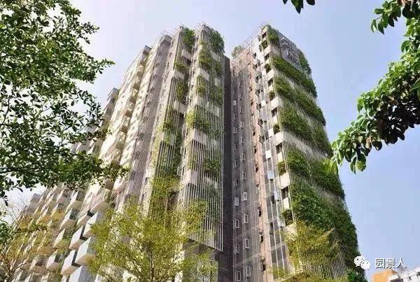 垂直绿化·会呼吸的墙壁_16