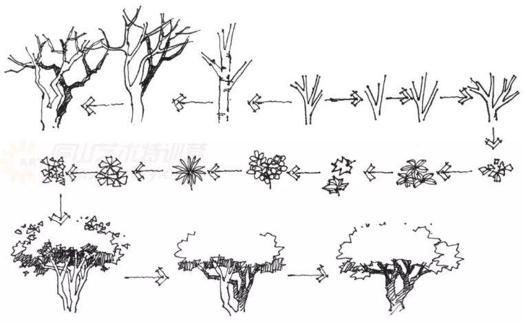 作为景观设计师必须掌握的景观线稿表现_16