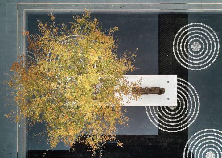 树池的配置方法和设计形式_63