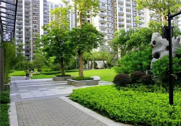 树池的配置方法和设计形式_50