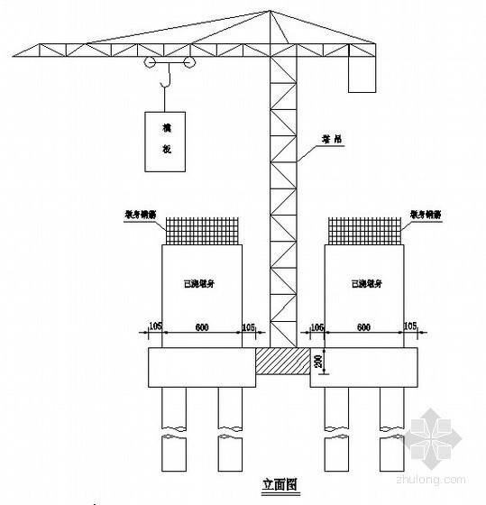 桥梁塔吊施工墩身示意图