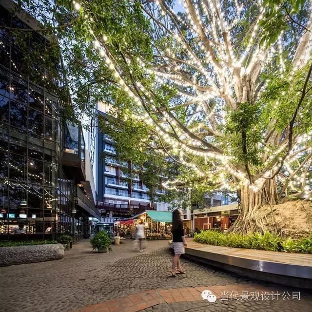 泰国清迈思绪公园景观设计_9