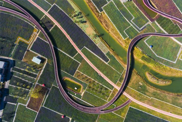 中国建筑设计奖公布,八大景观项目获得中国建筑界最高荣誉!_15