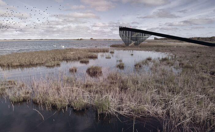 鹿特丹建筑师设计观鸟步道_3
