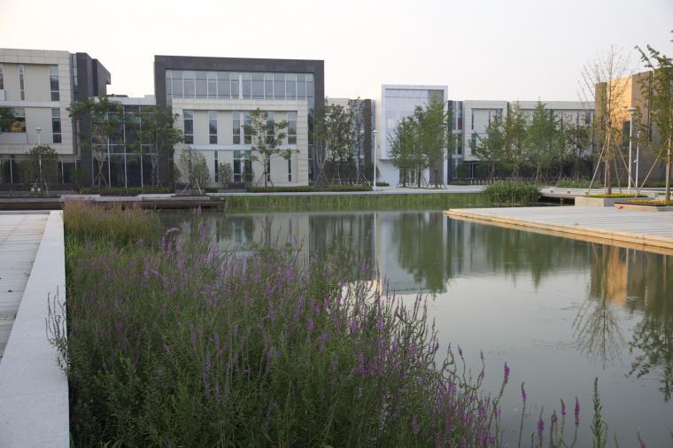 [知名设计公司特辑]走进AECOM的景观规划世界(70套资料在文末)_34